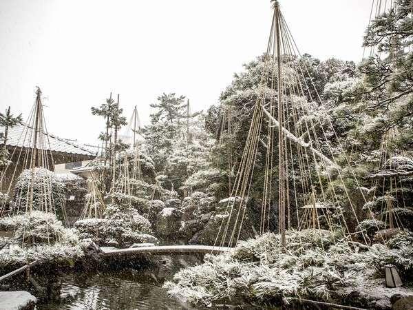 日本庭園【四季折々の表情を見せてくれます】
