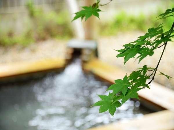 【大浴場露天】白樺の若葉が生い茂り、木漏れ日の下での湯浴みが楽しめる♪