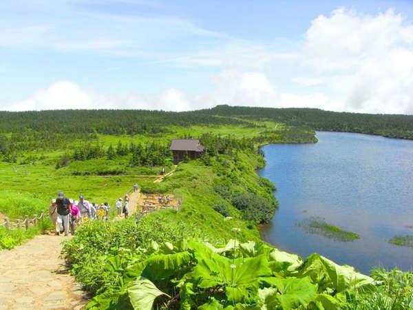 *爽やかな自然散策を気軽に楽しめるトレッキングコースです♪