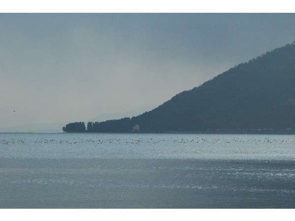 当館前の浜から見たびわ湖