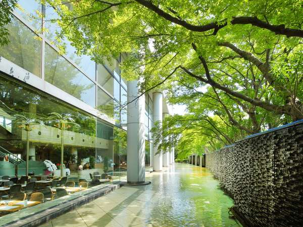 光と水と緑が織りなす、リゾートの空間。