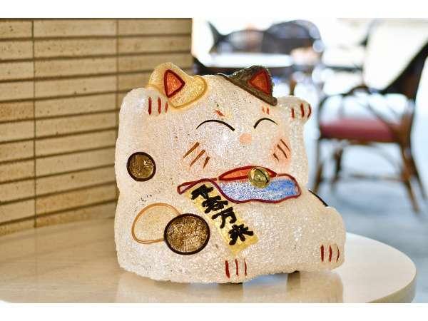 南海荘の看板猫 皆様のお越しをお待ちしております!