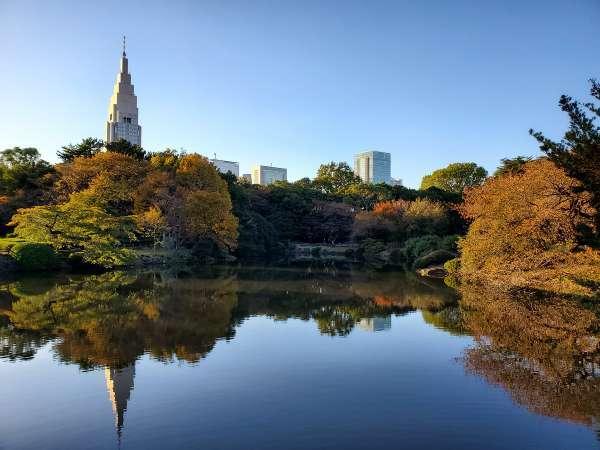 秋の新宿御苑