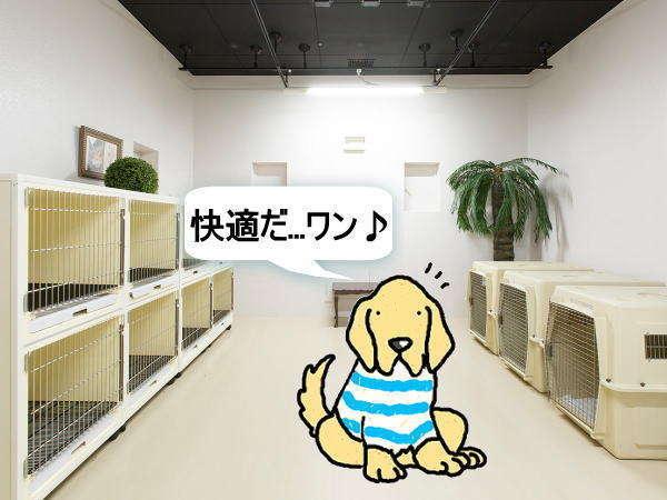【ペットハウス】快適空間で愛犬をお預かりします