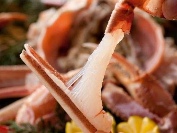 【津居山がに】活がにならではのプリップリッの食感のお楽しみ下さい。