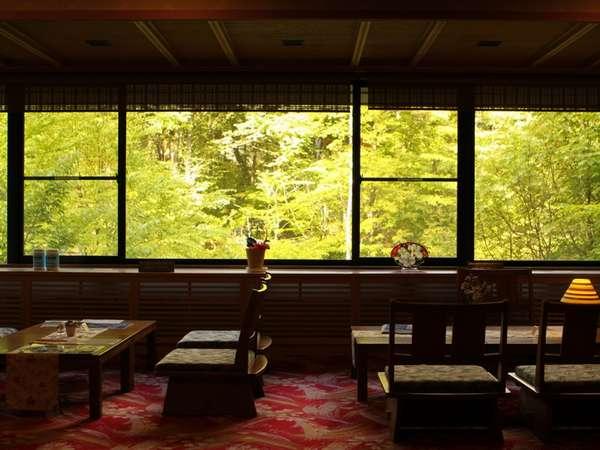 広々としたロビーの大きな窓・・・夏はみどりに包まれてのびのびとお過ごしください