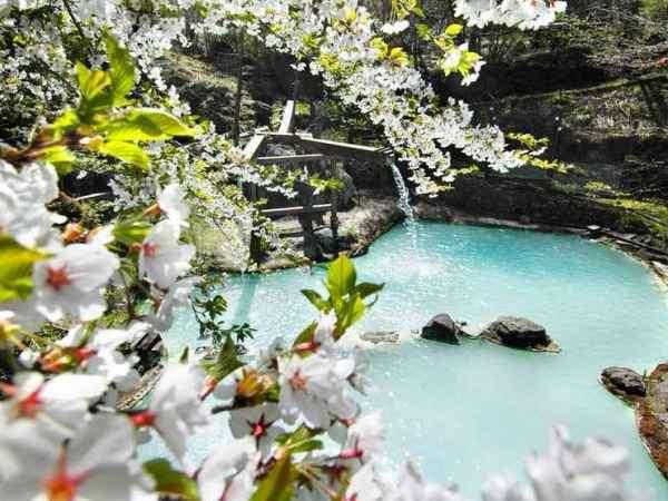 ≪大野天風呂≫山桜を愛でながら…至福の花見露天