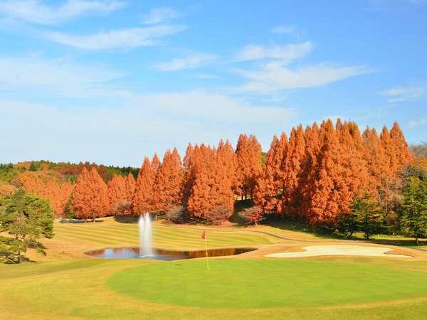 【紫塚ゴルフ倶楽部 ホテルグリーンヒル】天然温泉と趣向を凝らしたお料理が自慢のゴルフリゾート