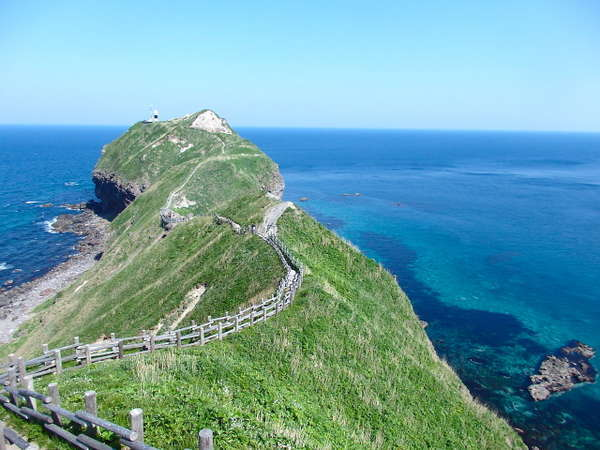 神威岬の遊歩道は恐竜の首の上を歩くように続きます