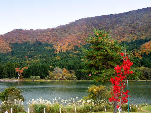 *北竜湖の紅葉