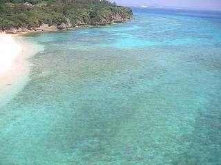 すぐ前の珊瑚礁の海でのカヤック、シュノーケルご案内致します。クマノミやウミガメもいます。