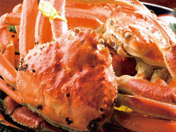 【年中活蟹の宿 展望三国温泉 はれや旅館】はれやの生簀は1年中蟹と鮮魚が泳いでます♪海ビューの露天も最高