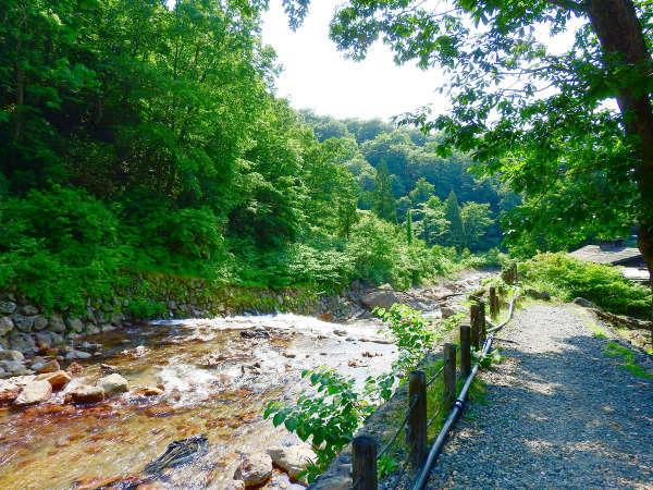 *じっくりと温泉を満喫したあとは、川沿いをゆっくり散策するのもおすすめです。