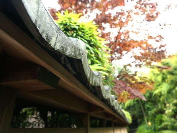 ■鮮やかな紅葉が建物と相まった秋の当館