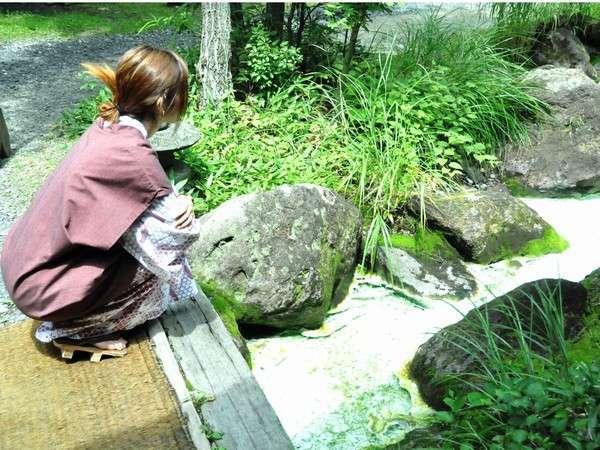 源泉から流れる小川のせせらぎが都会の喧騒を忘れさせてくれる。