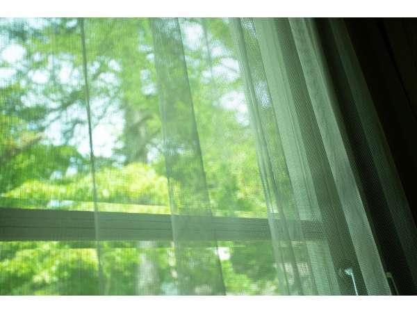 外の緑を眺めながらのんびりステイ