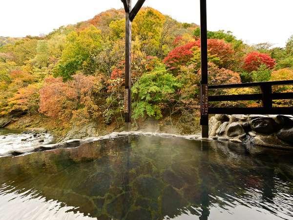 男性大浴場「仙人の湯」露天風呂の目の前に風呂がる自然庭園。
