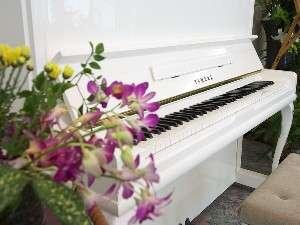 ピアノの音色で癒されます