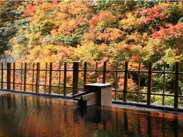 【四季彩の宿 ふる里】源泉かけ流し絶景露天風呂と四季彩の創作会席で心和むひと時を