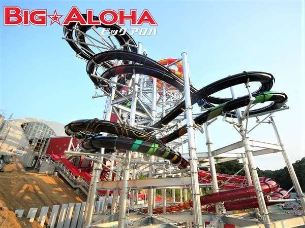 BIG★ALOHA 高低差&滑走距離 日本一のボディスライダー