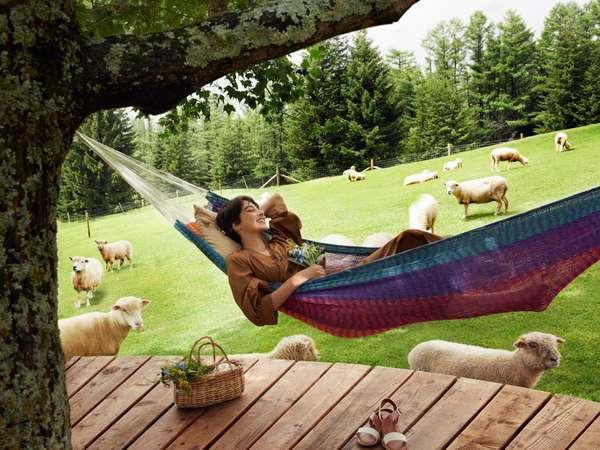【ファームエリア】羊とお昼寝ハンモック