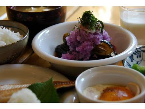 揚げ茄子の紫大根おろし和えが色鮮やかです。羅臼産のホッケには大根おろしをたっぷりと添えています。