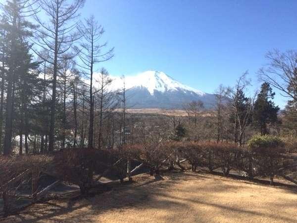 当館の庭からの景色。晴れの日には富士山が美しく見えます。
