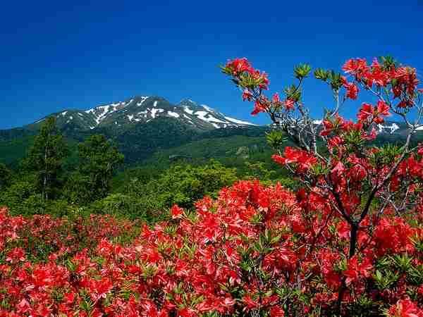 【休暇村 乗鞍高原】自家源泉「天峰の湯」につかり、高原の自然・空気を満喫