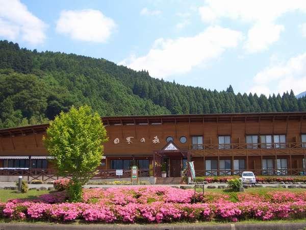 四季の森外観6月ごろ:季節ごとに周辺には木々や花々が咲き誇ります。