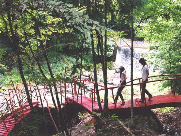 周辺の遊歩道。滝のしぶきを感じながら、マイナスイオンたっぷり。