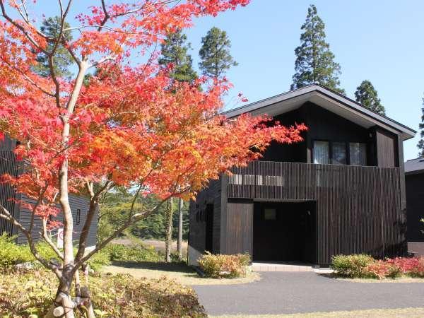 秋のロッジは、まばゆいばかりの紅葉が楽しめます