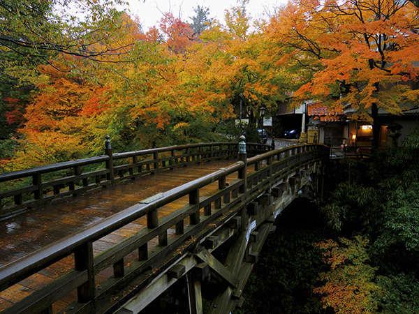 美しく色づく鶴仙渓谷。朝の散策もお楽しみの一つ。