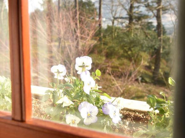 *【客室一例/窓からの景色】
