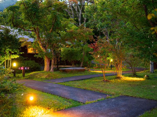 夕暮れどきの中庭