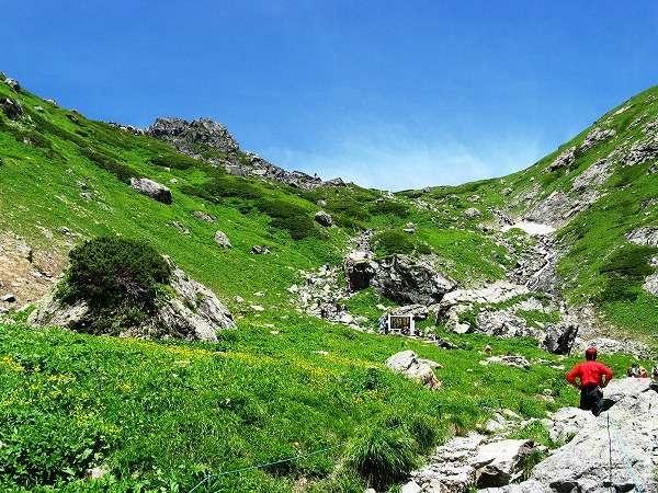 7月白馬岳の稜線とお花畑