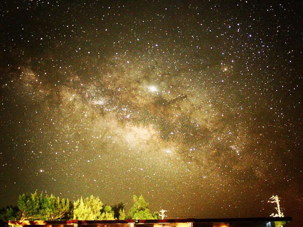 天候や月明かりなどの条件が揃えば、この通り。流星群の日は5分に1つ流れ星が。