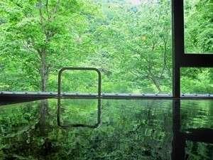 【大浴場】緑鮮やかな景色を眺めながら 朝風呂