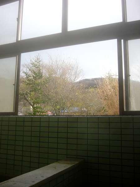 窓の外には、温泉裏山が..四季折々の変化をお楽しみ下さい。もう、露天感覚ですね...