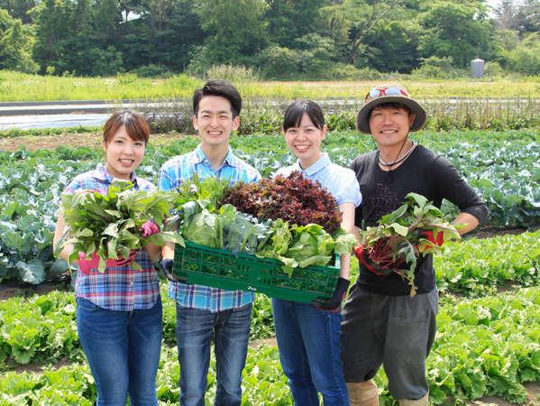 ホテル直営農園の野菜。とっても美味しい安全なお野菜です。