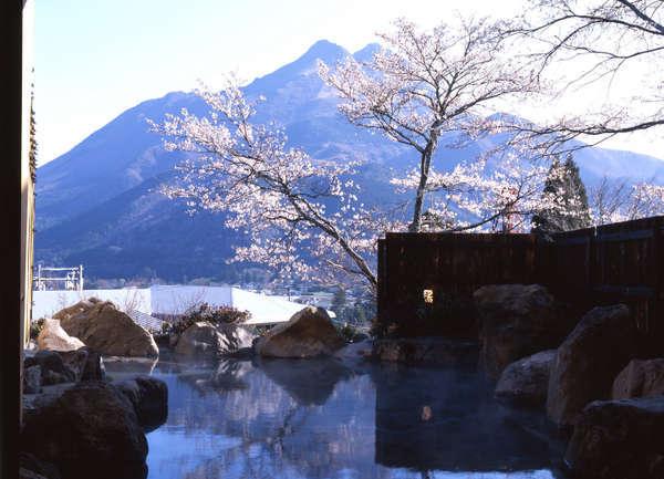 露天風呂から由布岳を眺望