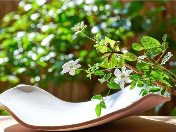 山芍薬の実と白鉄仙