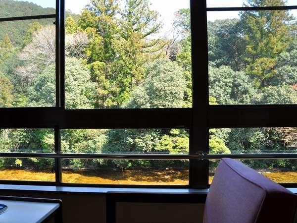 ゆっくり滞在できる雰囲気が心地良い♪美しい渓谷の景色を一望できる客室(一例)