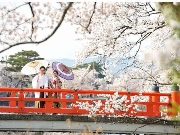 【高田公園の桜】当館からタクシーで約5分