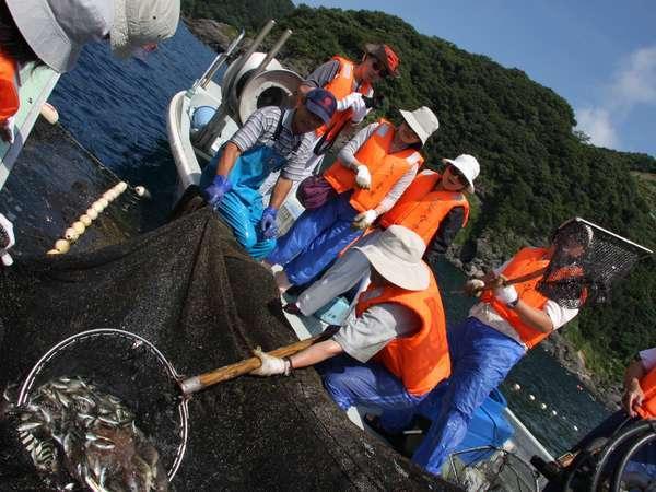 思わず歓声!!魚がいっぱい~♪ここでしかできない定置網漁体験で話題の旅育を♪