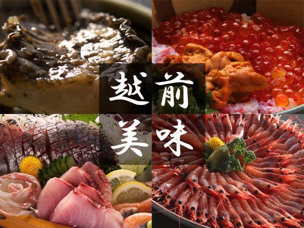 """■越前 旬の味覚■アワビ、いくら、地魚、甘エビ・・・獲れ立て新鮮""""海の幸""""が目白押し!"""
