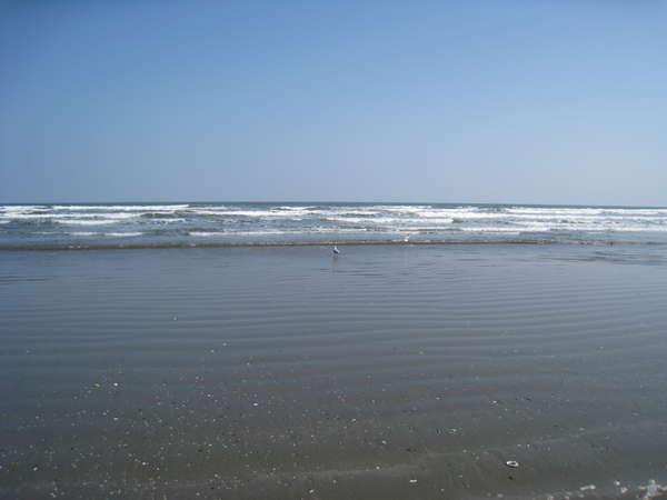 ポチハウスから5分で九十九里の海