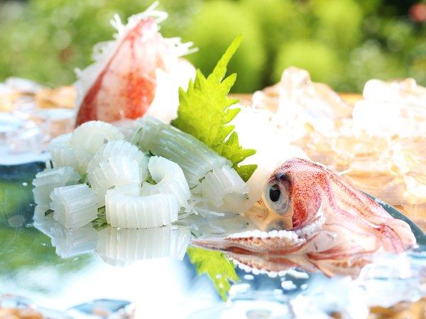 【香住 かに楽座 甲羅戯(こうらぎ)】夏は「白いか&香住かに」~日本海の食旅にお出かけください~