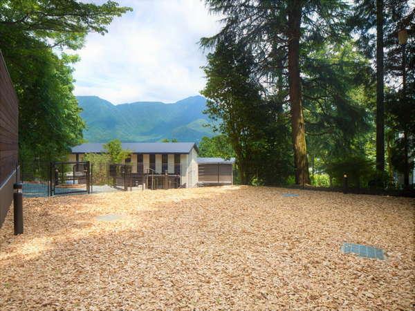 【屋外ドッグラン】箱根外輪山を望む敷地内ドッグラン!晴れた日はわんちゃんと一緒に駆け巡って