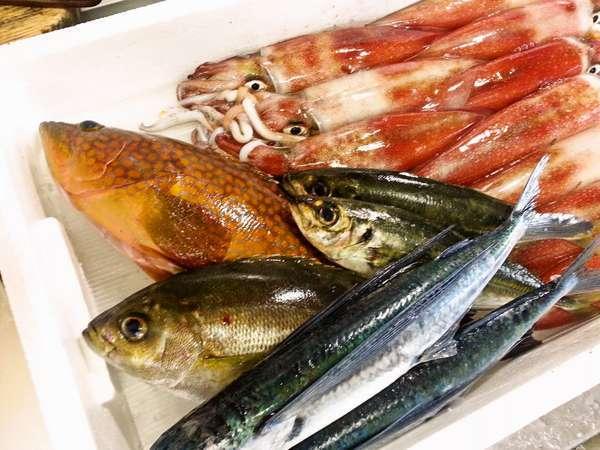 【海べのおやど 丸文】家族風呂Ok仲買人が毎朝仕入れる旬魚のお造り自慢の小さな宿です