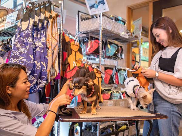 【クラブハウス&ショップ】愛犬を紫外線や雨から守る「ALPHAICON」の最新型ウェアも多数展開!